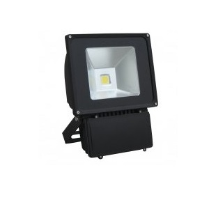 LED Floodlight - 60 Watt - UL Listed